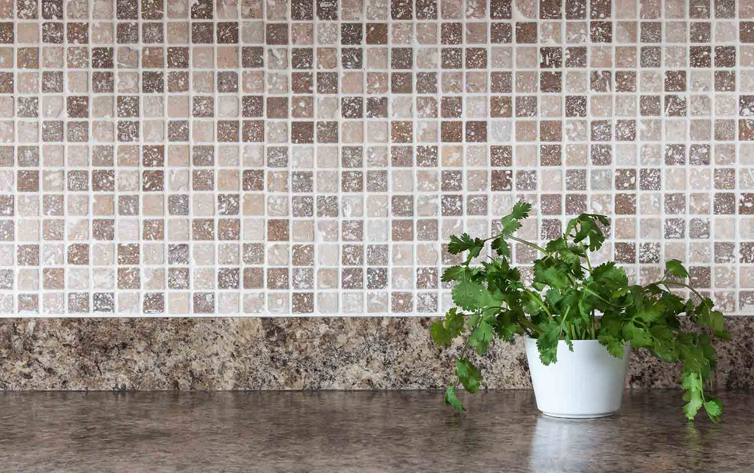 granite countertop with a backsplash. there is a plant with a white pot in the shot.